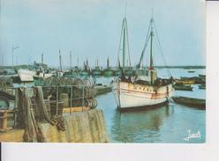 29 LESCONIL  -  Chalutiers Dans Le Port  - - Lesconil