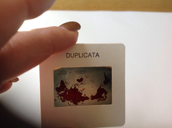 Diapositives - Diapositives