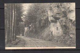 Luxembourg, Route De Consdorf à Müllerthal - Postales