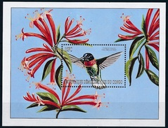 Congo 2000 MNH SS, Hummingbirds, Birds, Collared Inca Columbia & Peru