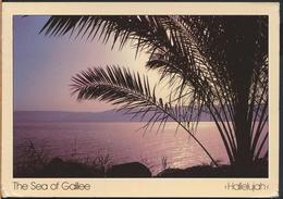 °°° GF251 - JORDAN - THE SEA OF GALILEE - With Stamps °°° - Giordania