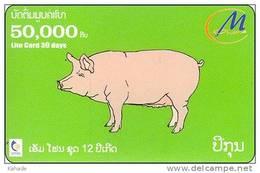 Laos  Phonecard     Zodiak Horoskop Schwein Pik