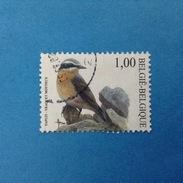 2002 BELGIO BELGIE BELGIQUE FRANCOBOLLO USATO STAMP USED - Fauna Uccelli 1,00 - Belgio