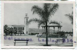 - 34  - PHILIPPEVILLE - La Place Marquet Et L'Hôtel De Ville, Glacée, Petit Format, écrite, TBE, Scans. - Algerije