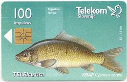 Slovenia - Telekom Slovenije - Krap Cyprinus Carpio Fish - 09.1998, 10.393ex, Used