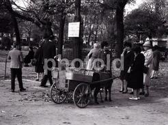 1963 CART PARIS FRANCE 35mm  AMATEUR NEGATIVE NOT PHOTO NEGATIVO NO FOTO - Other