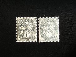 107  NEUF  Sans Gomme  2 Nuances - 1900-29 Blanc