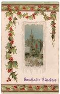 2 - AMITIé -  Souhaits Sincères - Décor D'hiver  *relief  -  Embossed * - Cartes Postales