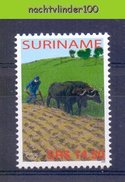 Nds1339 UPAEP U.P.A.E.P. KOEIEN PLOEGEN AGRICULTURE COWS MAMMALS PLOUGHING FIGHTING POVERTY SURINAME 2005 PF/MNH - Koeien