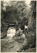 BOISSY LA RIVIERE (91) - Chute D'eau En 1956 (photo 13x18cm Environ ). - Lieux