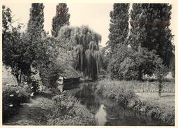 SACLAS (91) -Lavoir Au Bord De La Juine En 1955 (photo 13x18cm Environ ). - Lieux