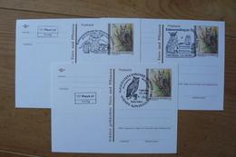 Autriche - 3 Entiers Postaux Avec Oblitérations Illustrées Différentes - Chouette Et Hibou - Rapaces
