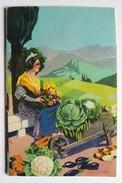Catalogue Publicitaire Semis Graines Blainco établissements Blain Saint Rémy De Provence Belle Couverture - 2. Graines