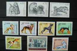 Chien - Dog - 10 Timbres Différents Neufs ** (MNH) - Séries Complètes - Allemagne - Bulgarie - Groenland - Cani
