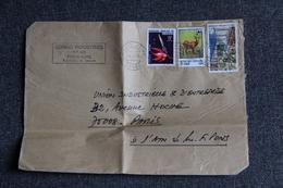 Lettre Envoyée Du CONGO à PARIS ( Grand Format) - Oblitérés