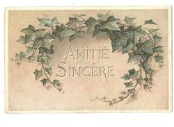Amitié Sincère - Lierre - Série Fantaisie - 1303 - Plantes Toxiques