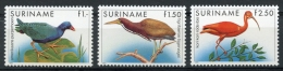 Surinam, Suriname, 1985, Birds, Animals, Fauna, MNH, Michel 1146-1148 - Surinam
