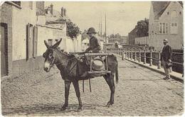 BRUGES - Jeune Laitier Flamand - ND Phot. N° 148 - Brugge