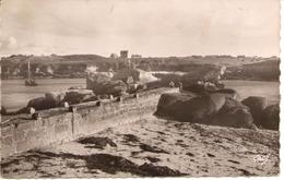 LANILDUT - La Jetée Et Le Rocher Du Crapaud - L'ABER-ILDUT - 29 - - Autres Communes