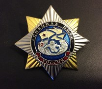 Russia Badge Special Forces Of Navy ,Diver Rare !! ,Metal ,New ! - Navy