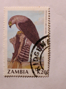 ZAMBIE 1990-91  LOT# 8  BIRD - Zambie (1965-...)