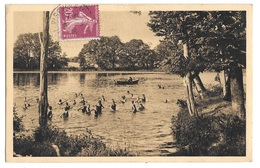 (14019-35) Piré Sur Seiche - Ecole Des Missions Coloniales - Les Enfants Au Bain Dans Le Lac De L'Ecole - Autres Communes