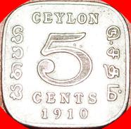 § QUADRANGULAR: CEYLON ★5  CENTS 1910! Edward VII (1902-1910)! LOW START★ NO RESERVE! - Sri Lanka