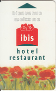 FRANCE - Ibis, Hotel Keycard, Used - Hotelsleutels (kaarten)