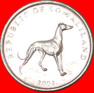 § DOG: SOMALILAND ★ 20 SHILLINGS 2002! LOW START★ NO RESERVE! - Somalia