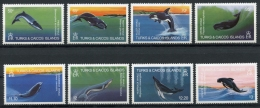 Turks And Caicos Islands, 1983, Whales, MNH, Michel 634-641 - Turks And Caicos