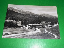 Cartolina S. Caterina Valfurva - Stazione Idrominerale - Panorama 1938 - Sondrio