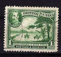British Guiana, 1934,  SG 288, Used (Wmk Mult Script Crown CA) - British Guiana (...-1966)