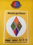 4030 - Merlot Del Ticino 1985 Aggr Spec Br Fr 9 Suisse - Militaire