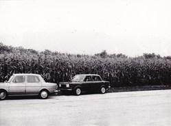 AUTO SIMCA 1000 - FOTOGRAFIA DEL 1979 CON DIDASCALIA SUL RETRO - Automobiles
