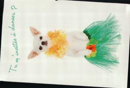 460A CHIEN     NON   ECRITE - Dogs