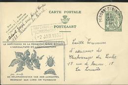 Carte Obl. N° 20. Propagande Pour La Lutte Contre Le Doryphore -insectes  -- Obl. Péronnes (Binche) 31/12/1935   Dernier - Geïllustr. Kaarten