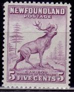 Newfoundland, 1932-37, Caribou, 5c, Scott# 190, MNH - 1908-1947