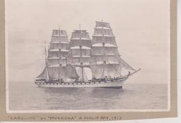 CARLINE EX MUSKOKA 1917  PHILIP BAY    +- 16 * 11 CM  REAL PHOTOGRAPH BOAT BARCO  BOAT Voilier - Velero - Sailboat - Barche