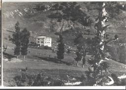 AVIO ALBERGO ALPINO.VIAGGIATA-1957-FG-185 - Trento