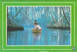 Cartolina - Postcard  -  REPUBBLICA DOMINICANA - LAGUNA GRI GRI - Cartoline