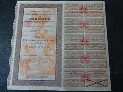 Compagnie Agricole Commerciale Et Industrielle De BADIKAHA 10 Actions De 100 F CFA 1927 Grand-Bassam - Afrique