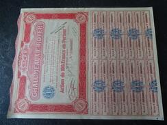 Chalumeaux E.Royer Sacer Action De 100 F Au Porteur 1924 Guillot - Electricité & Gaz