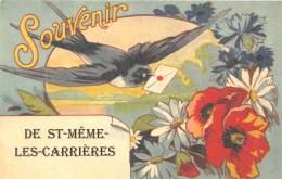 16 - CHARENTE / Fantaisie Moderne - CPM - Format 9 X 14 Cm - ST MEME LES CARRIERES - Francia