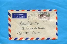 MARCOPHILIE-haute Volta -Lettre ->Françe-cad TENKODOGO 1963- Stamps-N° 100 Chasse Et Tourisme - Upper Volta (1958-1984)