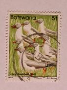 BOTSWANA 1982  LOT# 5  BIRD - Botswana (1966-...)
