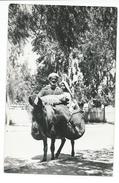 CPSM MAROC - SCENE TYPIQUE - RETOUR DU SOUK - HOMME FEMME ANE - CPSM FORMAT CPA - PHOTO NB TBE 2 SCANS - Marokko