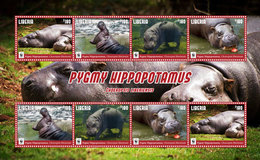 Liberia 2016 Animal Mammals Pygmy Hippopotamus WWF - Other