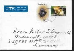 TANZANIE  Lettre  Singes Gorilles