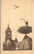 COLMAR - Nid De Cigognes - Colmar