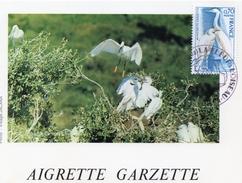 1976 - CM - 2eme SALON INTERNATIONAL LA FLEUR ET L'OISEAU à Caen - AIGRETTE GARZETTE - Tp N° 1820 - Marcophilie (Lettres)